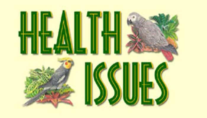 Seasonal infections start hitting population   Pakistan
