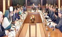 Senate committee rejects US interference in CPEC