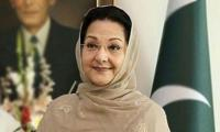 Kulsoom Nawaz's death and the insanity that followed