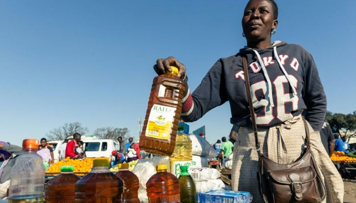 UN launches new Zimbabwe appeal as millions face food crisis | World