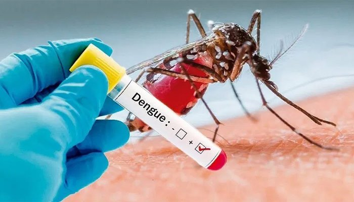 Homemade remedies to treat dengue fever