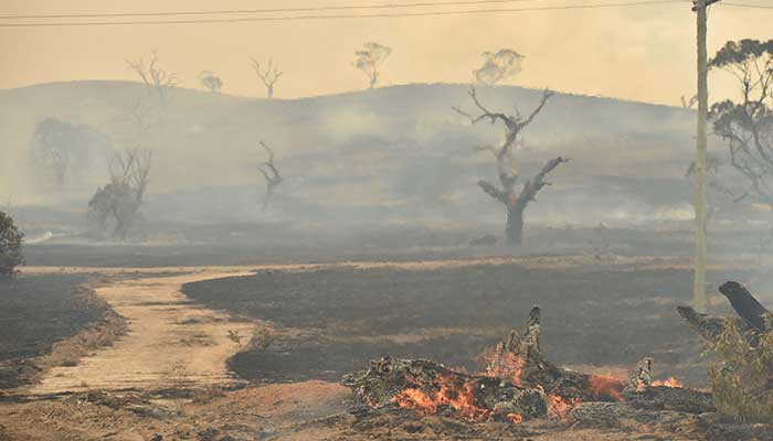 Rains 'breaking the back' of Aussie bush-fire crisis