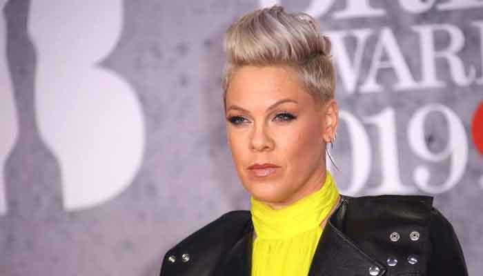 Pink says couple's therapy with husband Carey Hart is 'the only reason' they are still married
