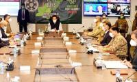 PM Imran praises nation's resilience and unity against coronavirus