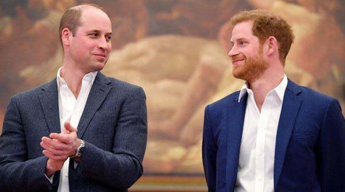 Princes William and Harry to share proceeds of Princess Diana's memorial fund