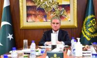 Qureshi calls for immediate steps to stop Israeli aggression against Palestinians, their properties