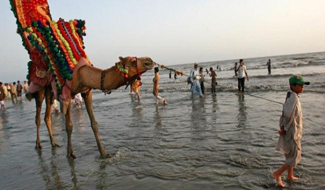 500mgd of pollutants being released into the sea daily