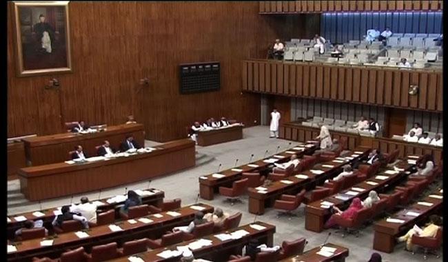 Senate passes Cyber Crimes Bill unanimously