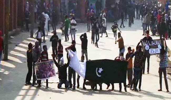 Fatemi briefs OIC envoys on Indian atrocities in IOK