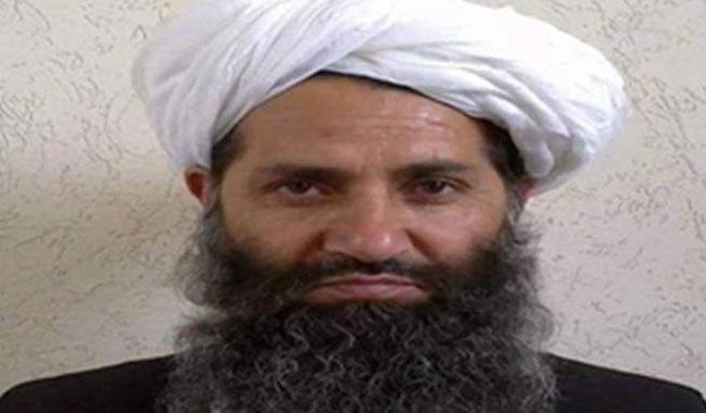 Taliban chief reinforces position, gets key members' support