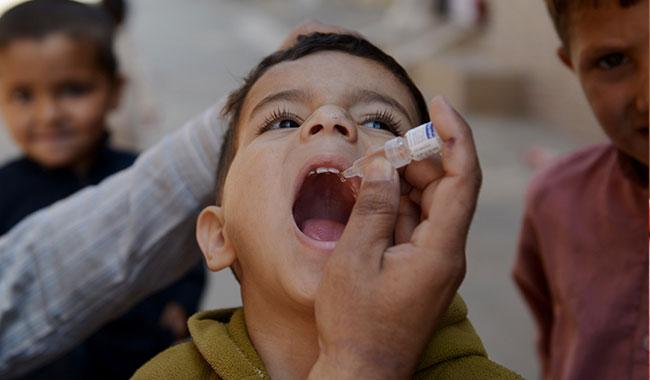 Sindh to put up better fight against polio this year: CM