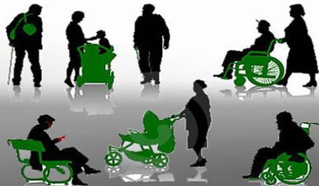 Counting PWDs in census impossible due to unavailability of disability column in main form