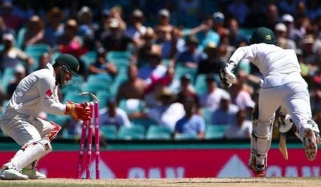 Australia's Wade confident back will withstand India Test