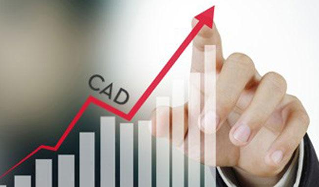Ministry of planning's proposed 3.1 percent CAD rejected