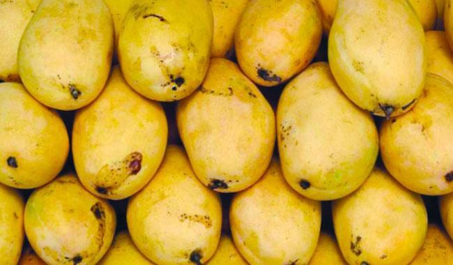 Pakistan eyes 100,000T mango exports
