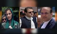 PM's children file objections to JIT report