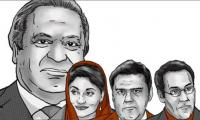 Office holder to bear scions' impact: SC