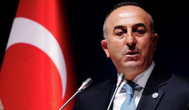 Turkish FM pledges to 'eliminate' anti-China forces