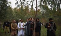 Reham points at irregularities in KP govt's Billion Tree Tsunami