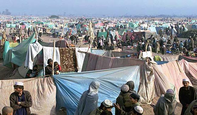 Registration of undocumented Afghans gains momentum