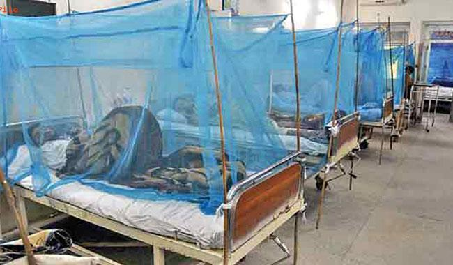 Doctor appointed to treat dengue in KP reportedly contracts dengue virus