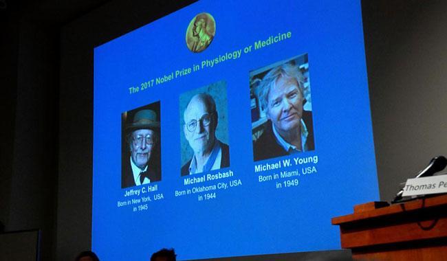 American trio win Nobel Prize for Medicine over circadian rhythms work