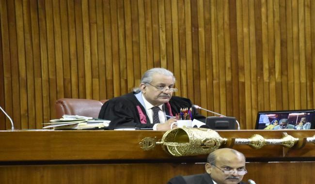 Senate adopts resolution against disqualified person holding party office