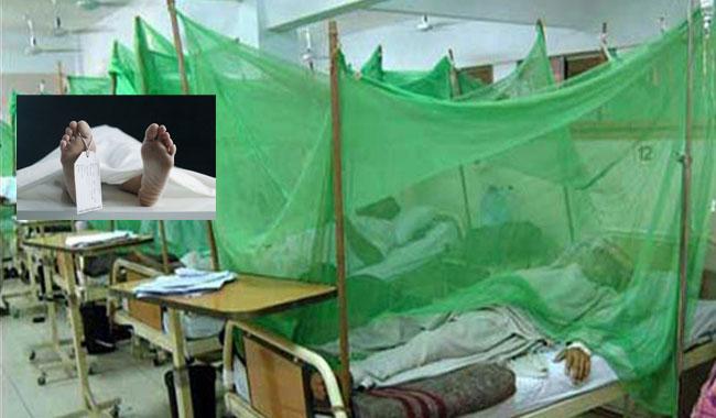 Death toll hits 54 as two more die of dengue in KP