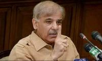 People to hold Zardari accountable if NAB, courts don't: Shahbaz