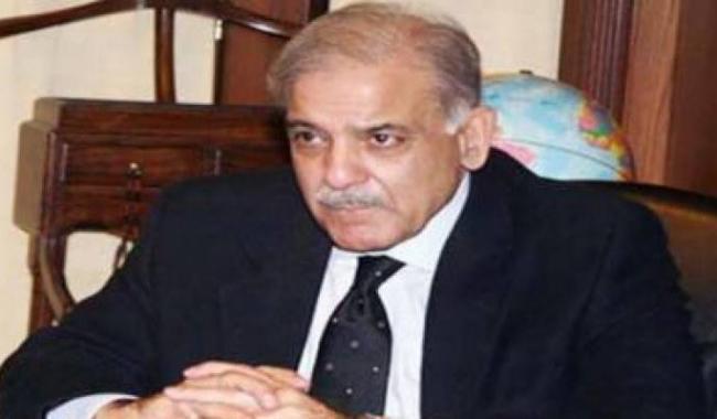 Zardari, Niazi aloof to people's problems, says Shahbaz