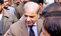 Army, judiciary and politicians must work in unison: Shahbaz