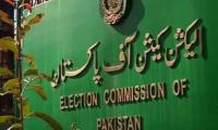 ECP forms body on I-voting
