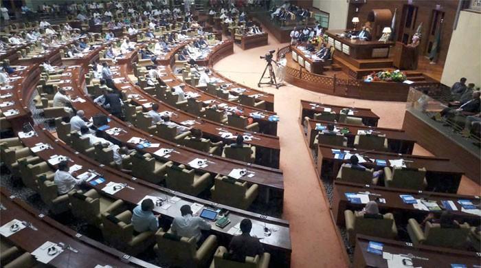 Budget debate marred by pandemonium in PA