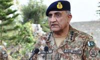 Army to plant 10m saplings: COAS