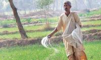 ECC nods near Rs2bln subsidy on imported urea