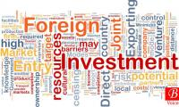 FDI plunges 19.2 percent in July-December