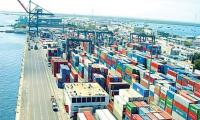 Exports to be record-high this year