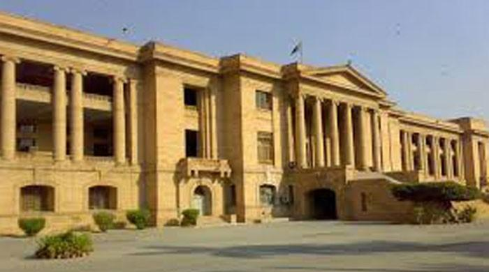 SHC voices concern over failure of DMCs to control population of stray dogs in Karachi