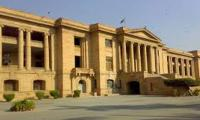 SHC tells govt to form task force to curb dog-bite cases