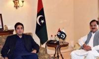 PPP to mobilise workers for anti-govt movement