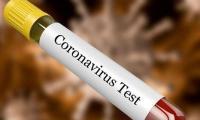 Global coronavirus cases pass 6.5m