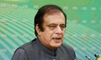 APC was ganging up of corrupt mafia: PTI