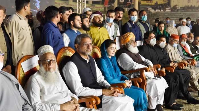 More cases registered against Maryam, Safdar, Sana, other N leaders