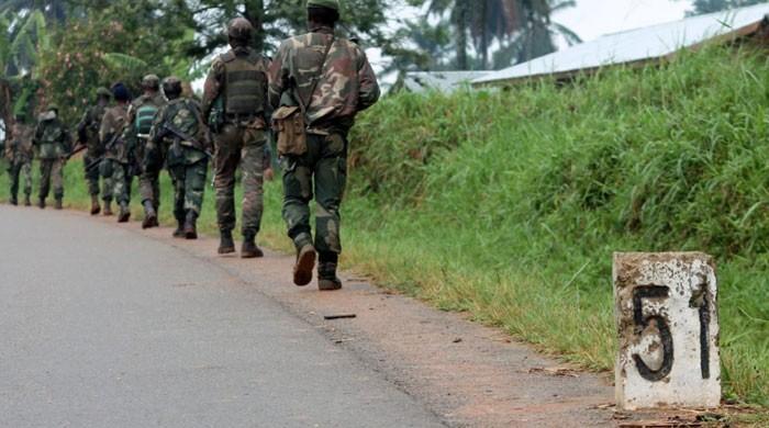 46 Pygmies killed in DR Congo