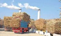 Punjab govt finds evidence about mills selling sugar 'off the book'