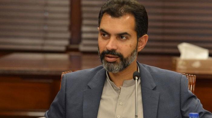 Flawed exchange rate resulted in de-industrialisation: Raza Baqir