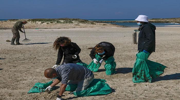 Lebanese clear tar pollution from turtle beach