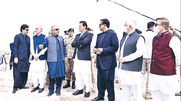 Olive plantation to help earn forex, ensure food security: PM