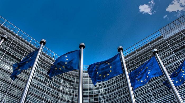 BJP has sown seeds of hatred in India, says EU HR chief