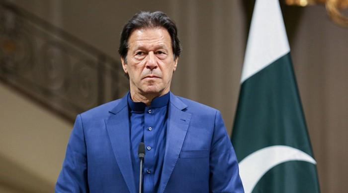 How Unicef, AI, other global reports endorse Imran's view against obscenity